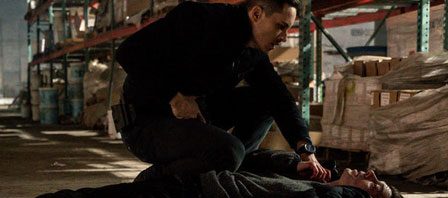 chicago-pd-6x12